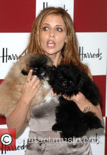 Sarah Michelle Gellar and Harrods 4
