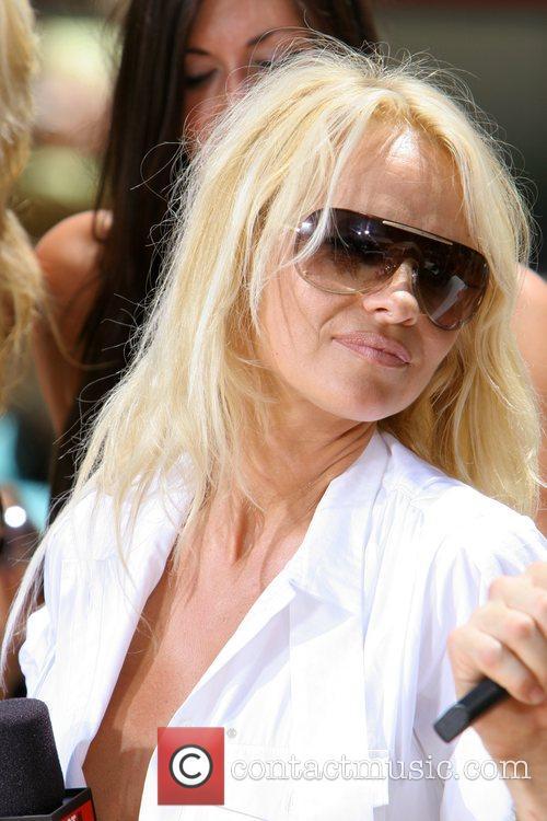 Pamela Anderson 28