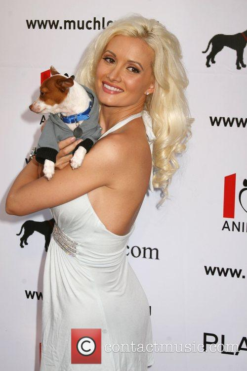 Holly Madison Much Love's Bow Wow Wow Animal...