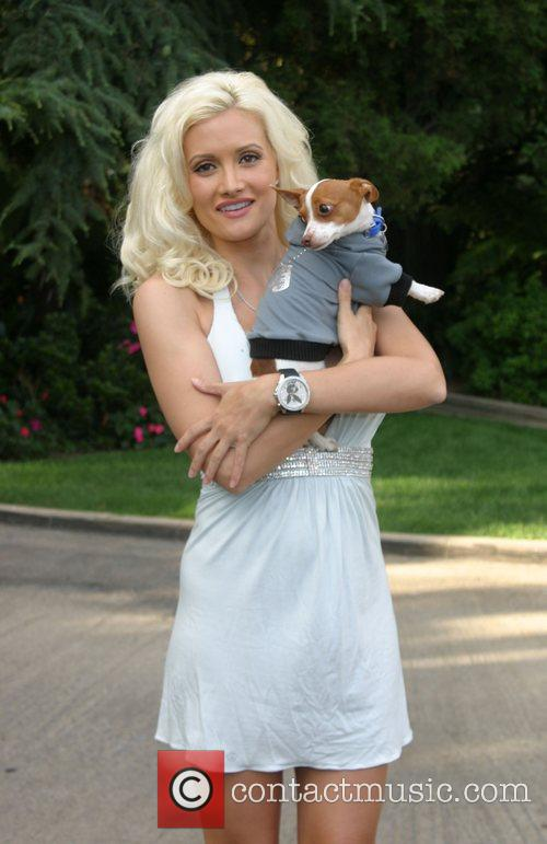 Much Love's Bow Wow Wow Animal Rescue Benefit...