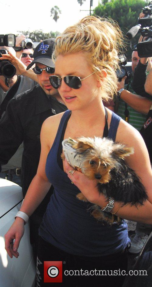 Britney Spears 26