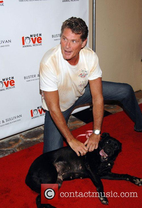 David Hasselhoff Party to celebrate the opening of...