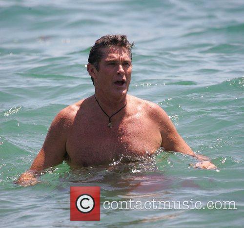 David Hasselhoff and Surfing 6