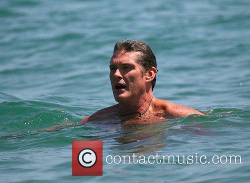 David Hasselhoff and Surfing 3