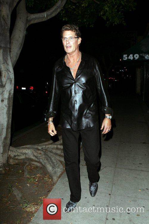 David Hasselhoff seen leaving an Irish bar after...