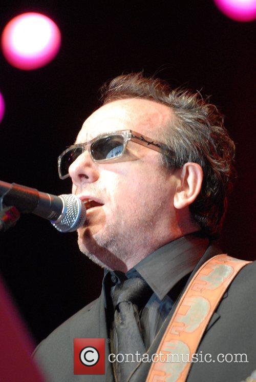 Elvis Costello 8