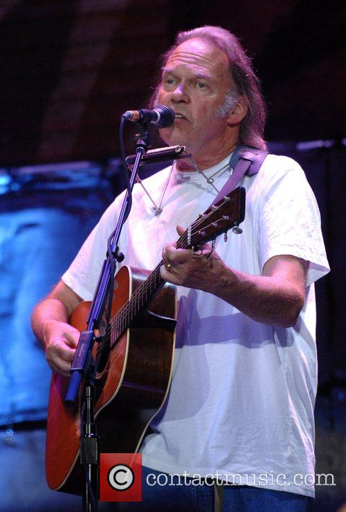 Neil Young 8