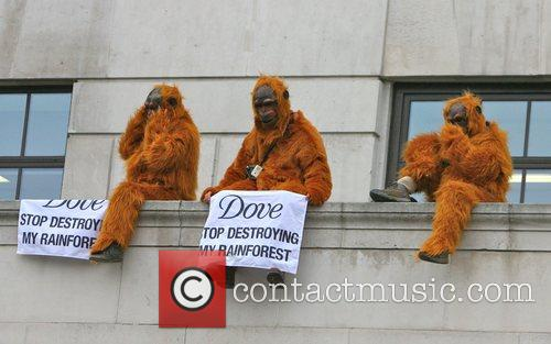 Greenpeace Members Dressed As Orangutans Have Scaled The London Unilever House On The Victoria Embankment To Demonstrate Against Dove. Unilever Is The Parent Company Of Dove 1