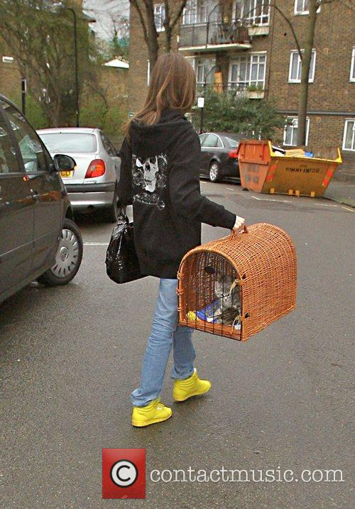 Carries a kitten in a basket into Kate...