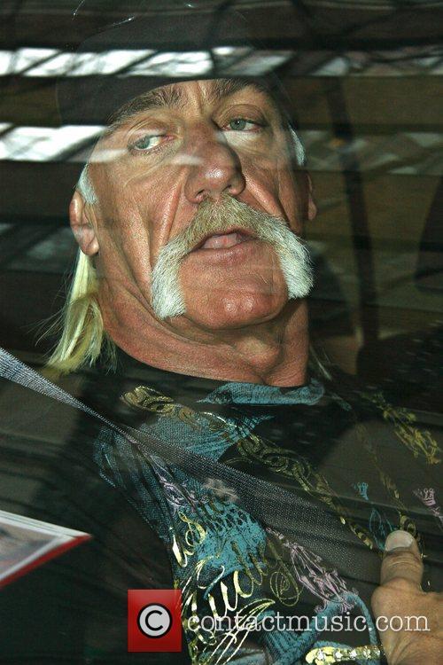 Hulk Hogan, ABC