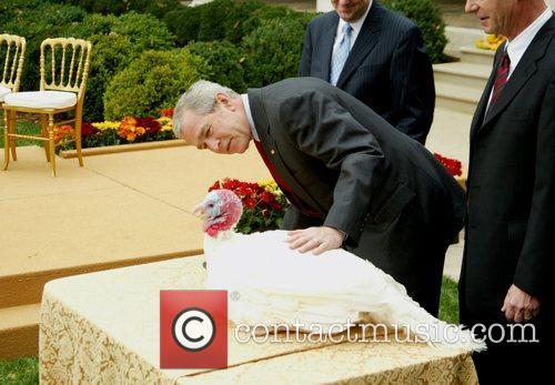 President George Bush Pardons National Thanksgiving Turkey