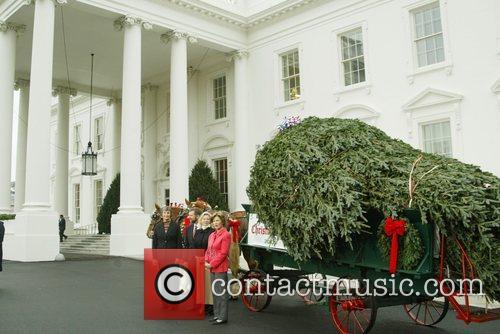 Representatives of the National Christmas Tree Association, Joe...