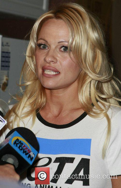 Pamela Anderson and Las Vegas 60