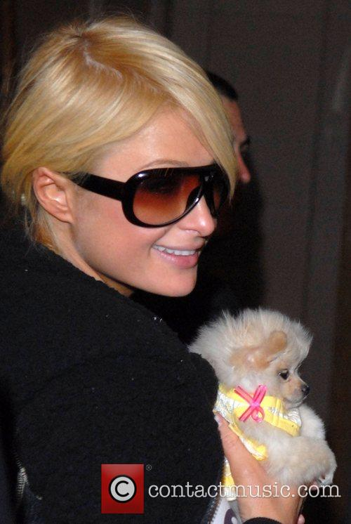 Paris Hilton with her pet dog and wearing...