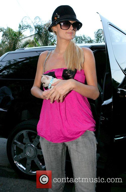 Paris Hilton dressed in a pink top had...
