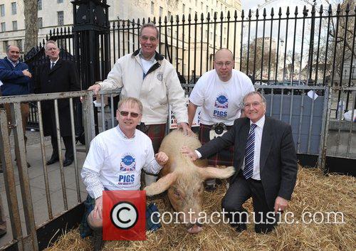 Pig farmers' demonstration held opposite Downing Street