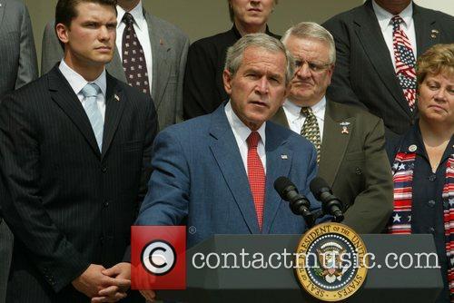 Bush 8