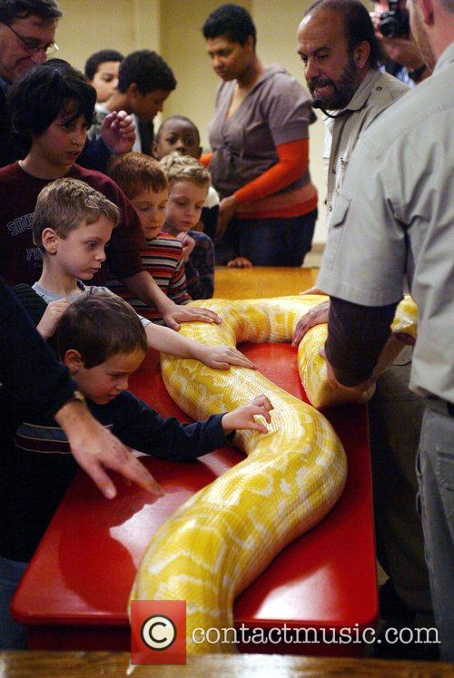 'Reptile man' Michael Shwedick held a live reptile...