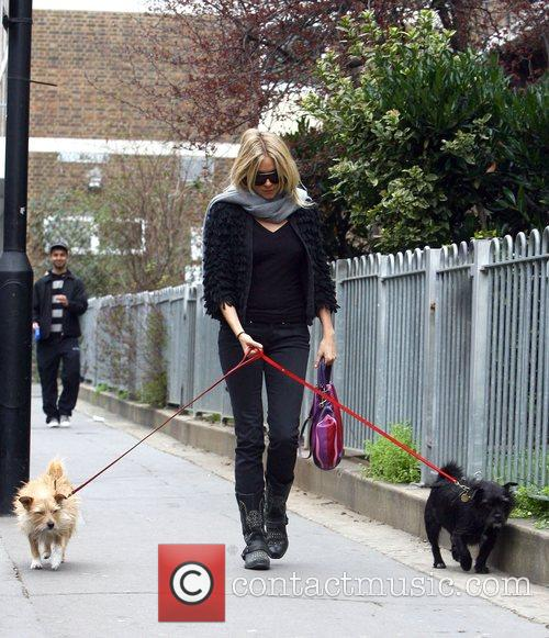 Sienna Miller walking her dogs Porgy and Bess...