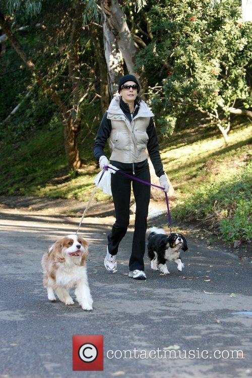 Teri Hatcher walking her dogs Los Angeles, California