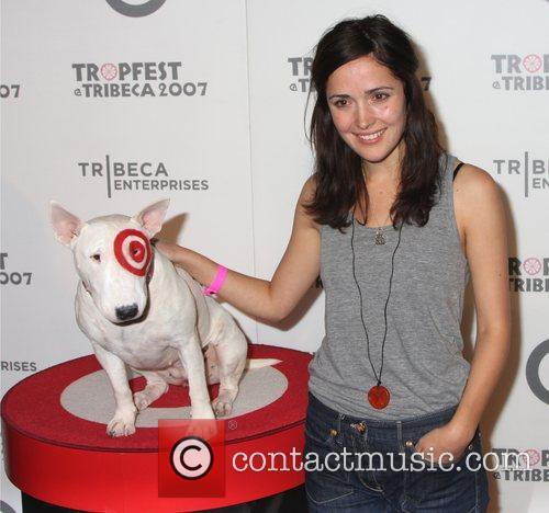 At 'Tropfest', the world's largest short film festival...