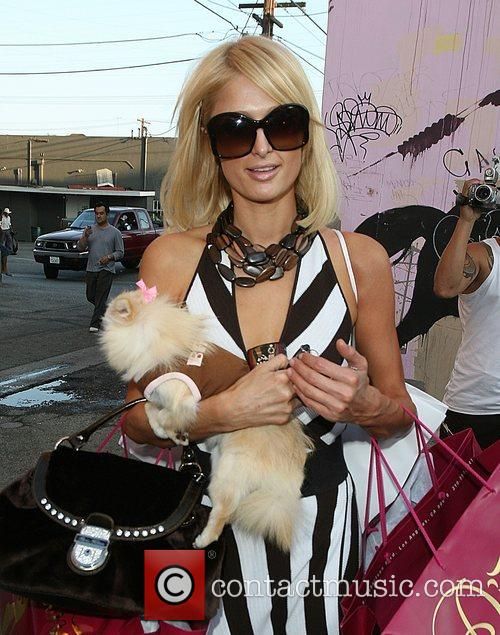 And her Pomeranian dog 'Marilyn Monroe' shop at...