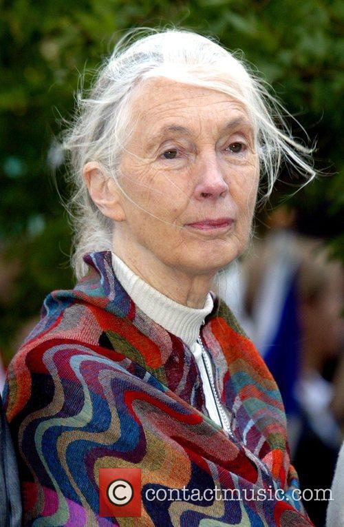 Jane Goodall attending the 'Ringing of The Peace...