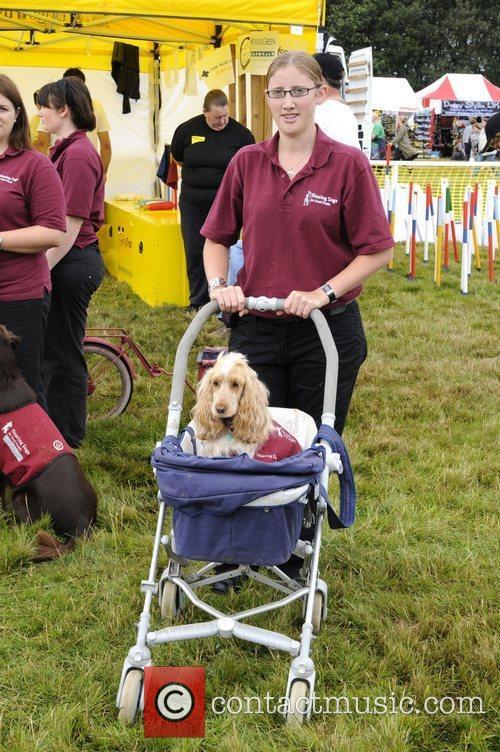 Demonstration Dog Fern with trainer Clare Bott Wag...