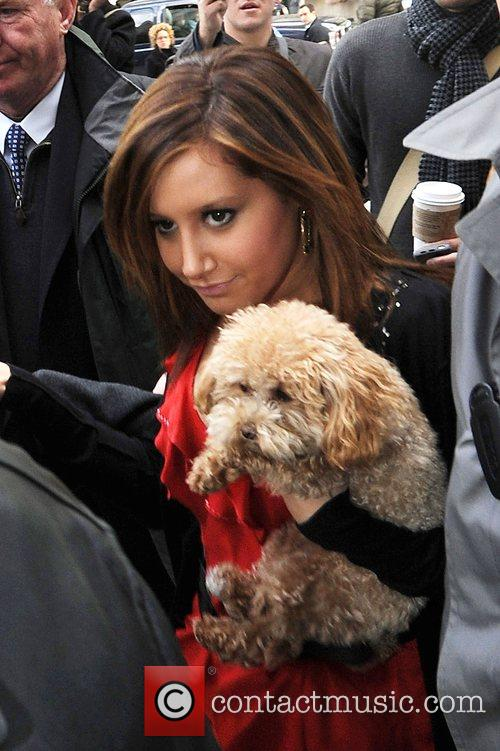 Carrying her dog while out and about in...