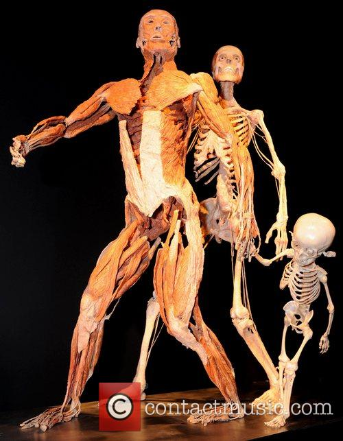 'Body Worlds and The Mirror of Time' exhibition...