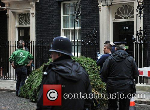 A Christmas tree being erected at Downing Street...