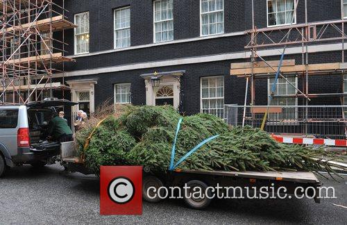 A huge Christmas tree is delivered to Downing...