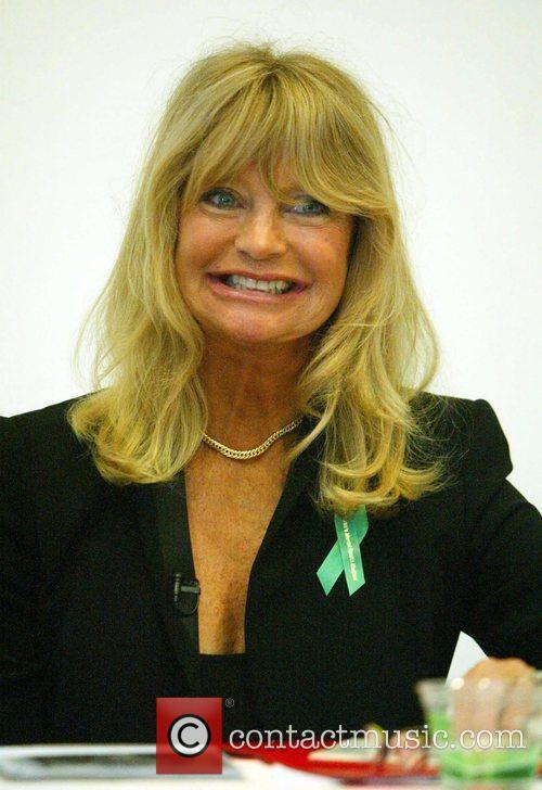 Goldie Hawn 16