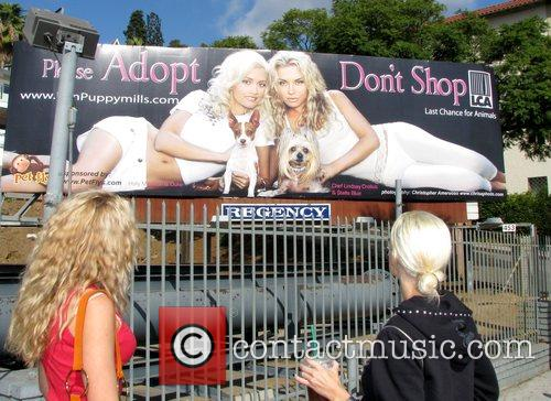 Pose in front of a billboard which she...