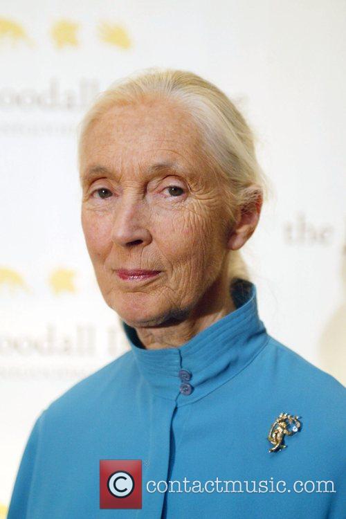 Jane Goodall 2