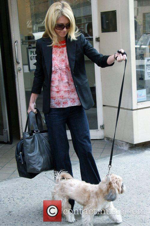 Kelly Ripa, Abc and Abc Studios 2