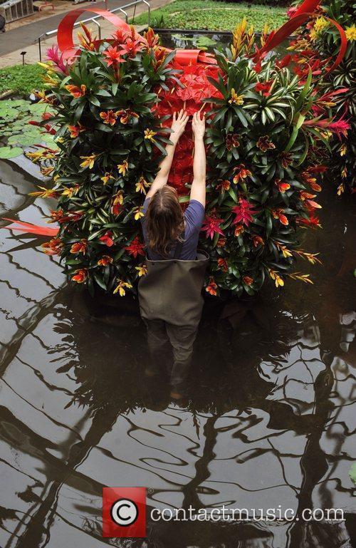 Kew Garden's Tropical Extravaganza - Photocall The first...
