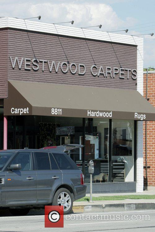 Westwood Carpets Nicollette Sheridan shopping for rugs while...