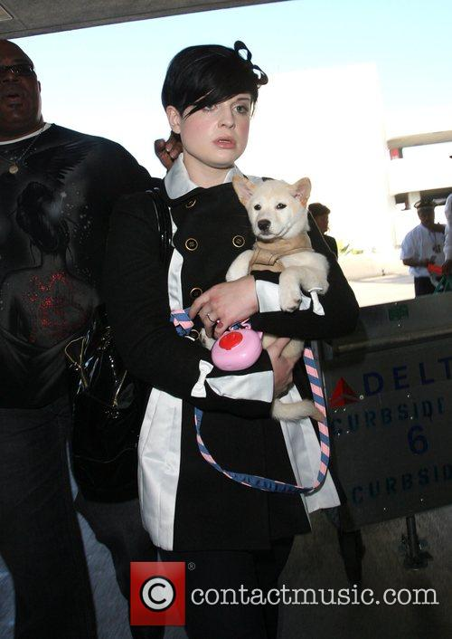Arrives at LAX airport holding a dog