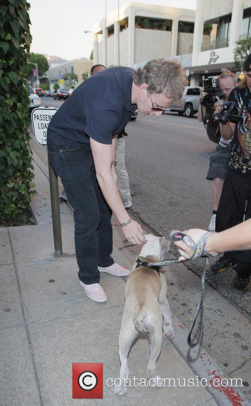 Patrick Kielty meets a Boxer dog called 'London'...