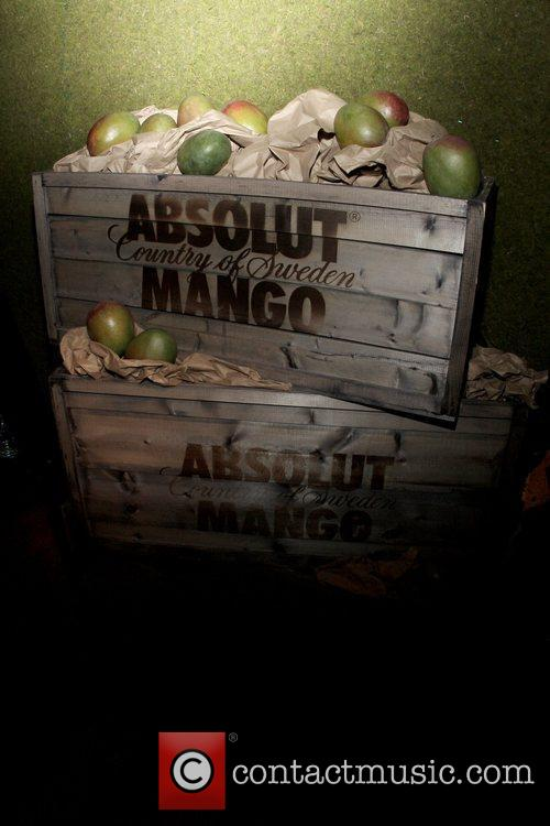 Atmosphere launch of 'ABSOLUT MANGO' at the ABSOLUT...
