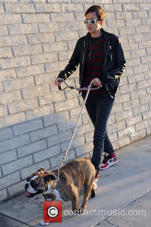 Samantha Ronson collects her dog from the dog...