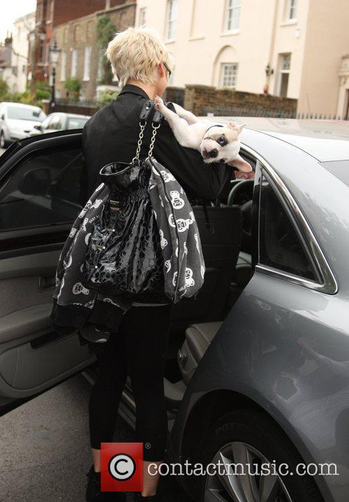 Sarah Harding helps her dog Corker into a...