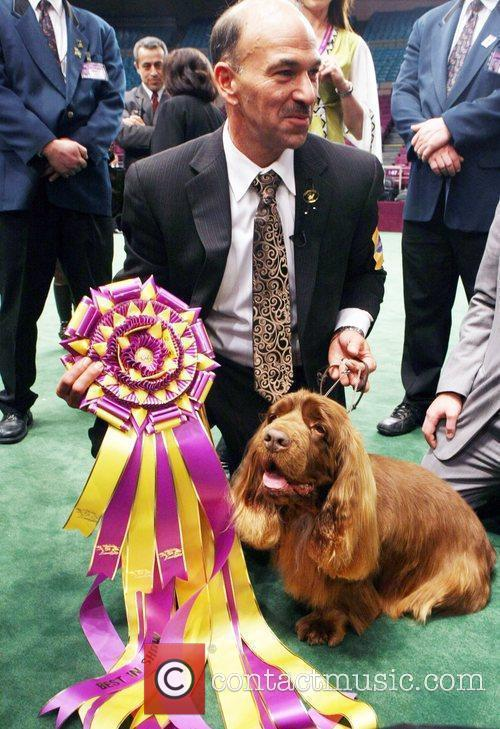 The 133rd Westminister Annual All Breed Dog Show Finals 4
