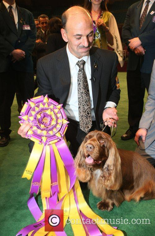 The 133rd Westminister Annual All Breed Dog Show Finals 3