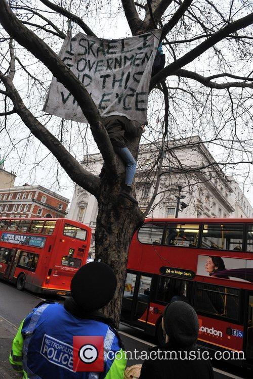 Two protesters climb a tree at Whitehall with...