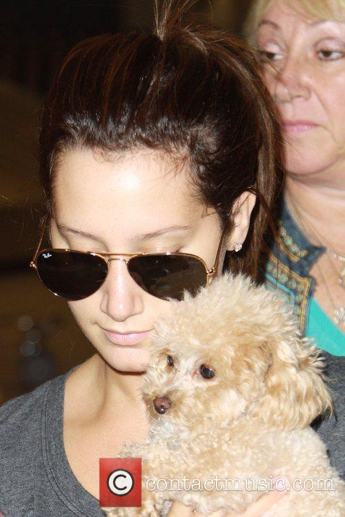 Ashley Tisdale and Her Dog Maui 7
