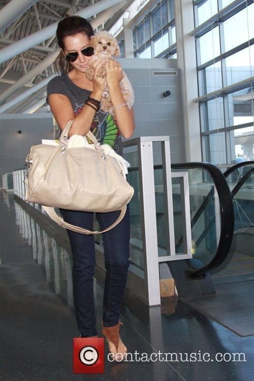 Ashley Tisdale and Her Dog Maui 9