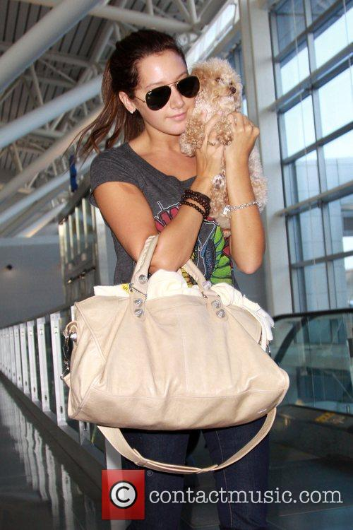 Ashley Tisdale and Her Dog Maui 8