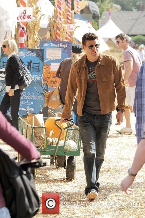 'Bones' star David Boreanaz shopping for a pumpkin...